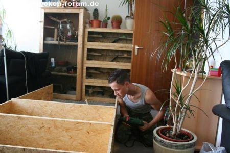 schnecken forum thema anzeigen mein selbstgemachtes schneckenregal was sagt ihr dazu. Black Bedroom Furniture Sets. Home Design Ideas